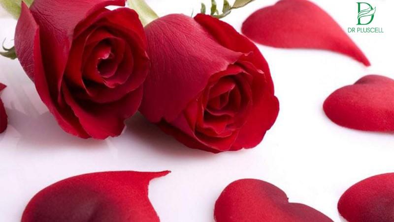 Son môi từ hoa hồng