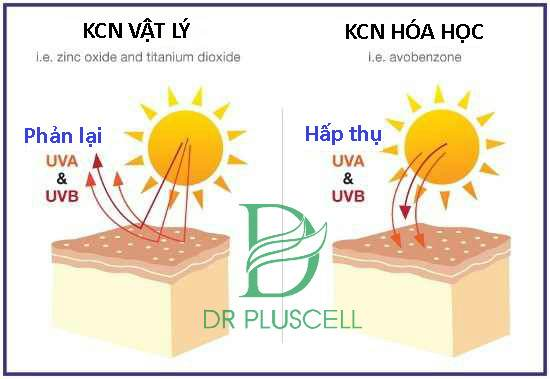 so sánh kem chống nắng vật lý và hóa học