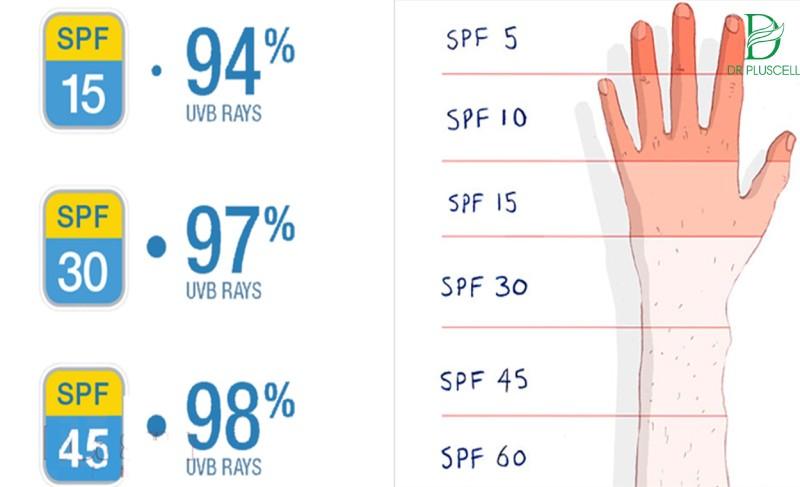 Bảng % chỉ số chống nắng theo SPF