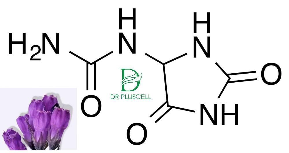 Bột rửa mặt Dr Pluscell