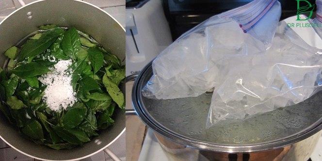 Công thức làm toner nguyên chất từ lá trà xanh.