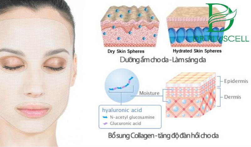 cong-dung-collagen