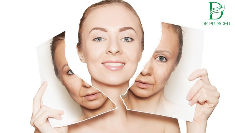 sản sinh collagen