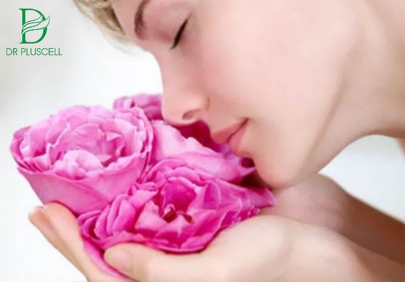 Lợi ích nước hoa hồng
