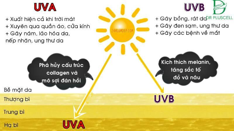 tia UVA và UVB