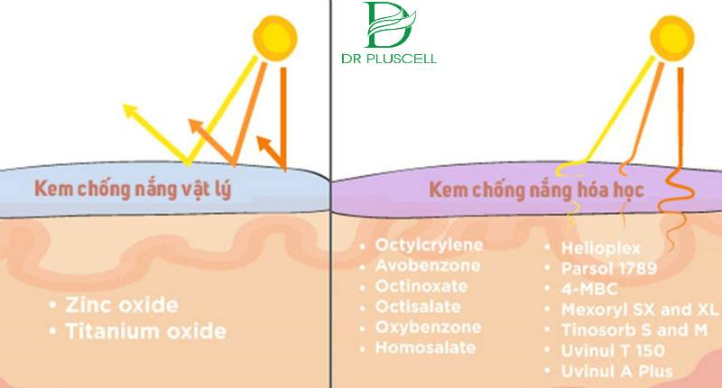 kem chống nắng vật lý hay hóa học
